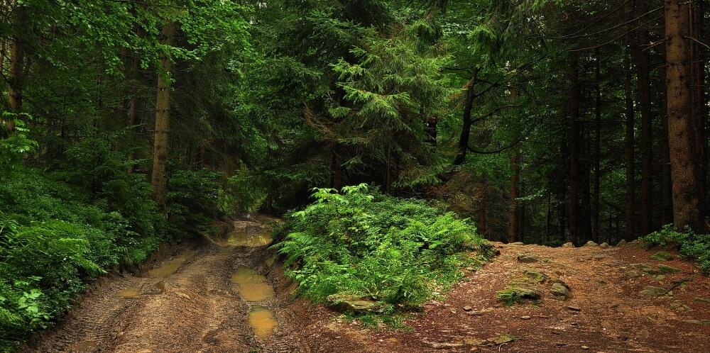Ścieżka górska